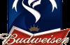 Sheffield United vs Fulham Live Stream